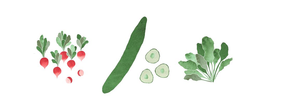 grönsaksboard nyhetsbrev 2